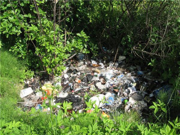 Весна - время уборки и расчистки дачного участка